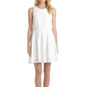 Crisp White Lace Skater Dress by FRENCHI